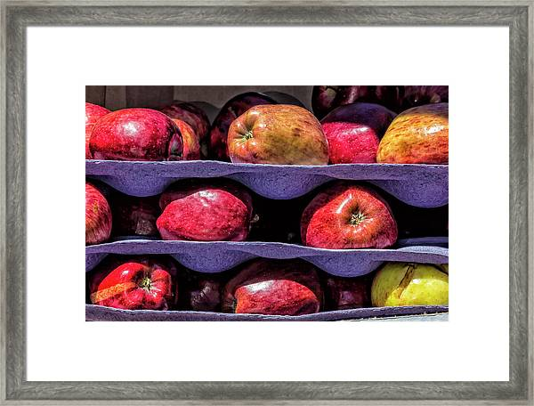 Apples And Sunlight Framed Print by Robert Ullmann