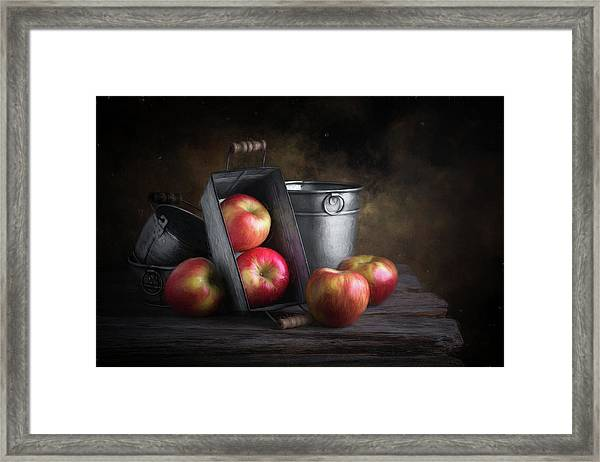 Apples With Metalware Framed Print