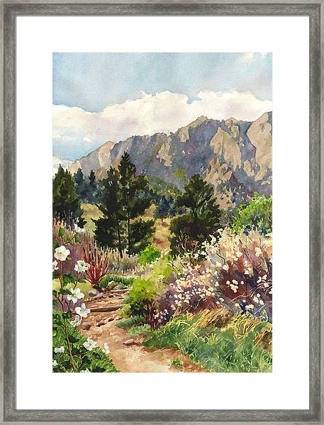 April Hike Framed Print