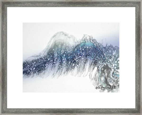 Aquatic 2 Framed Print