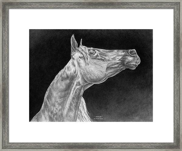 Arabian Horse Attitude Print Framed Print