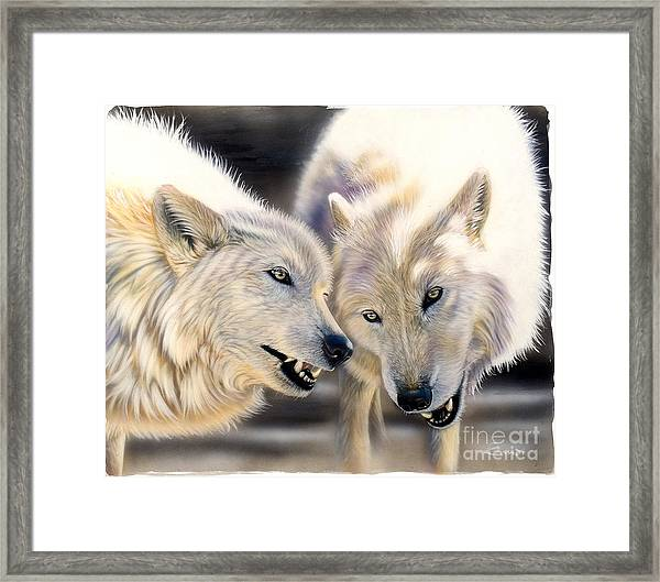 Arctic Pair Framed Print