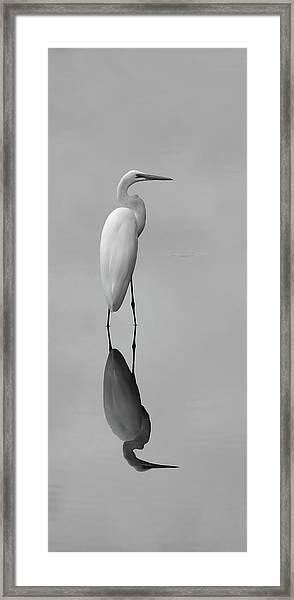 Argent Mirror Black And White Framed Print