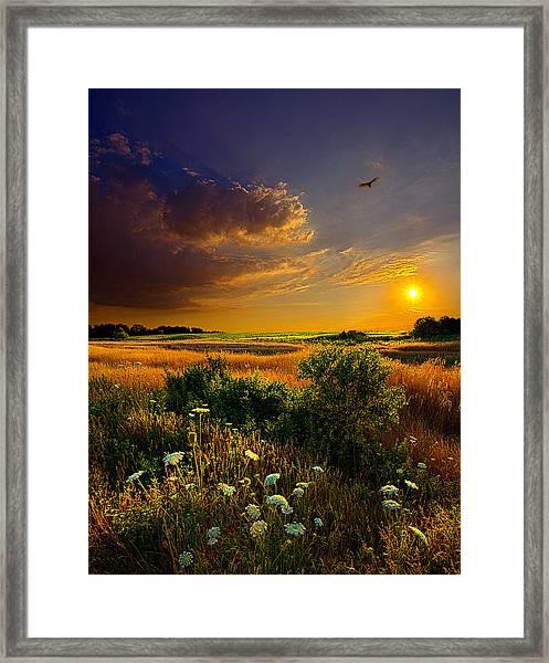 Aridity Framed Print