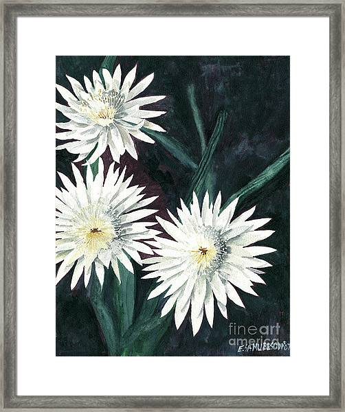Arizona-queen Of The Night Framed Print