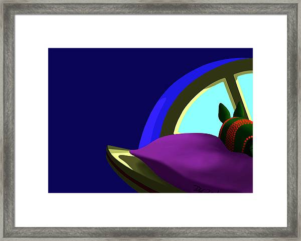 Armadillo On A Pillow Framed Print