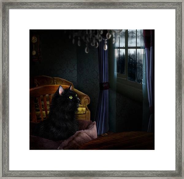 Armando Framed Print