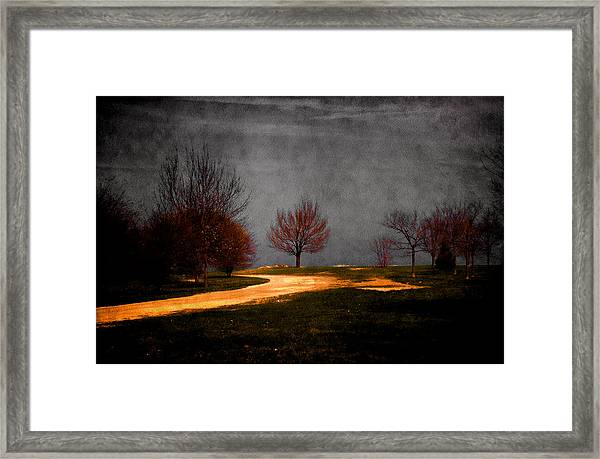 Art In The Park Framed Print