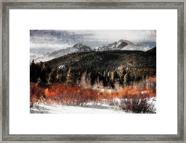Art Series #4 Framed Print by Garett Gabriel