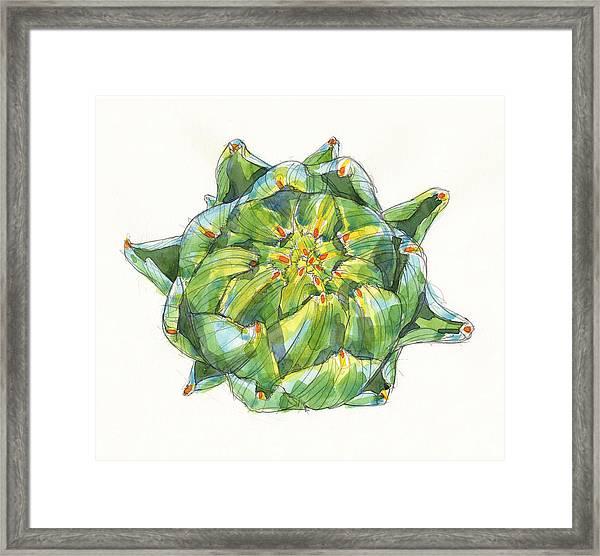 Artichoke Star Framed Print
