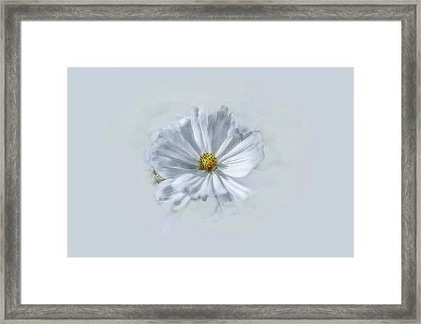 Artistic White #g1 Framed Print
