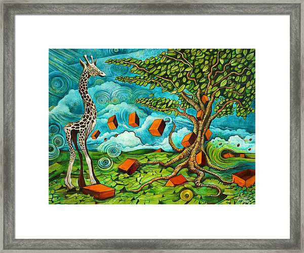 As High As Giraffe Bus Framed Print
