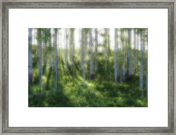 Aspen Morning 2 Framed Print