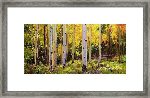 Aspen Symphony Framed Print