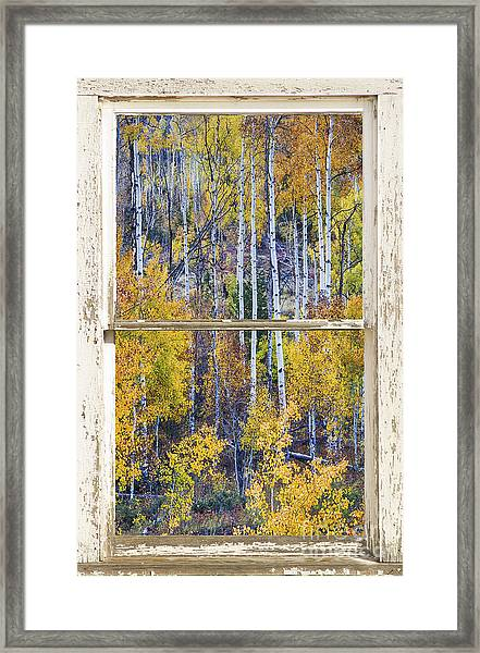 Aspen Tree Magic Cottonwood Pass White Farm House Window Art Framed Print