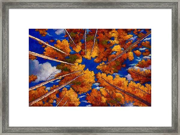 Aspen Vortex Framed Print