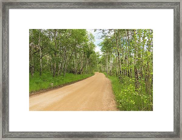 Aspen Way Framed Print