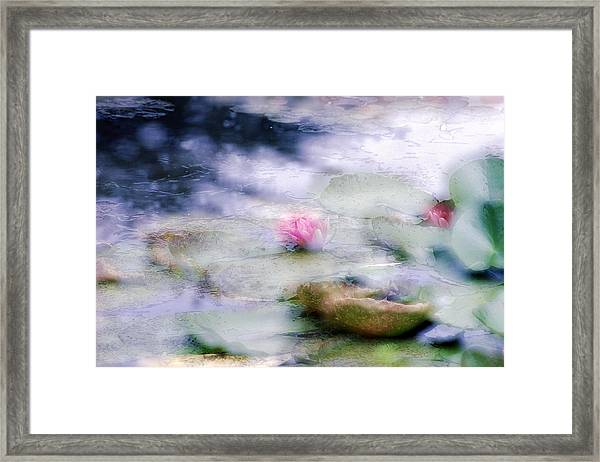 At Claude Monet's Water Garden 12 Framed Print