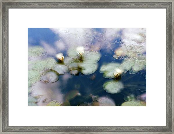 At Claude Monet's Water Garden 4 Framed Print