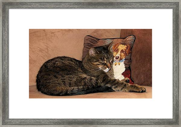 At Least One Thing Dogs Are Good For Framed Print