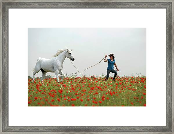 At The Poppies' Field... 2 Framed Print