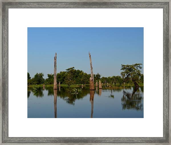 Atchafalaya Basin 18 Framed Print