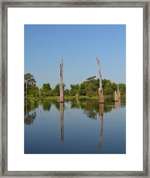 Atchafalaya Basin 19 Framed Print