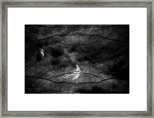 Athena's Bird Framed Print