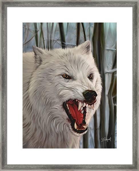 Atka Arctic Grey Wolf Framed Print