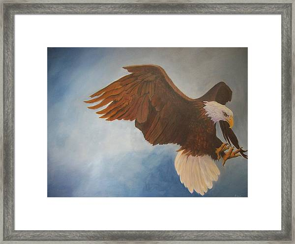 Attack Life Framed Print by Bill Werle