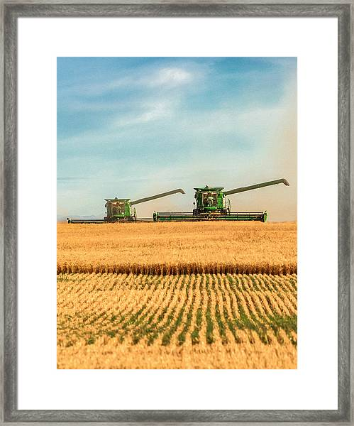 Augers Out Framed Print