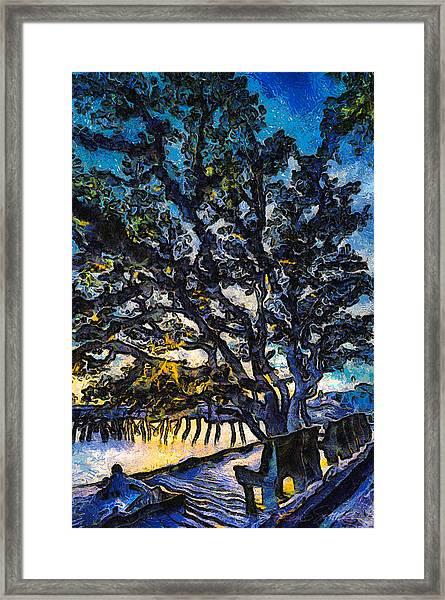 Aunt Kate's Old Live Oak Framed Print