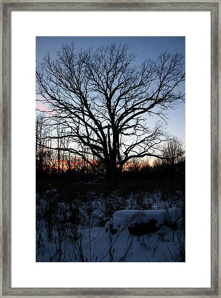 Framed Print featuring the photograph Aura Fc by Dylan Punke