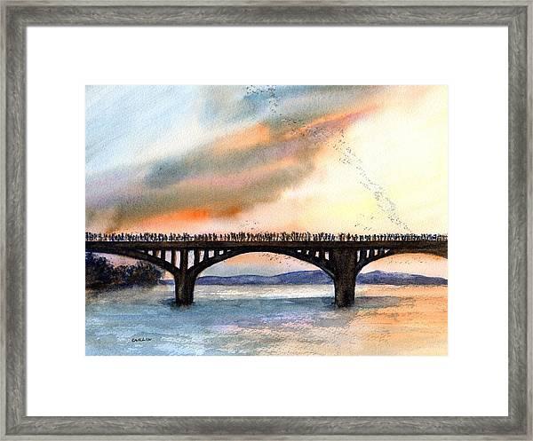 Austin, Tx Congress Bridge Bats Framed Print
