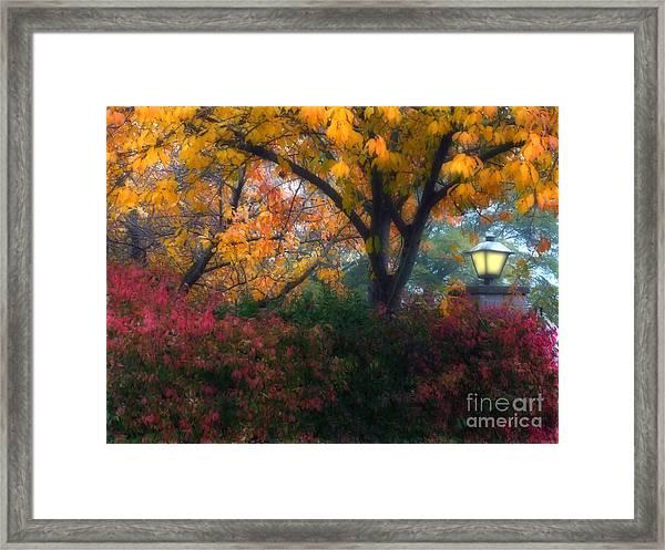 Autumn 3 Framed Print