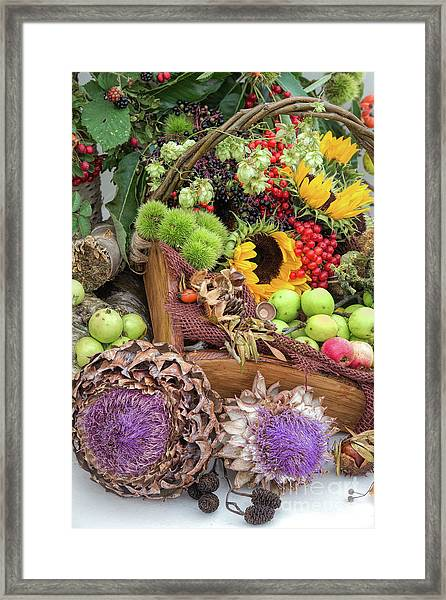 Autumn Abundance Framed Print
