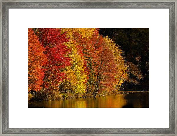 Framed Print featuring the photograph Autumn Afternoon At The Cove by William Jobes