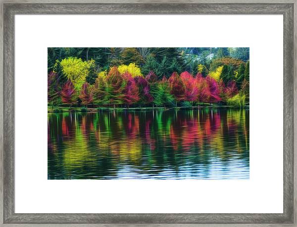 Autumn At Green Lake Seattle Framed Print