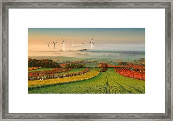 Autumn Atmosphere In Vineyards Framed Print by Matej Kovac