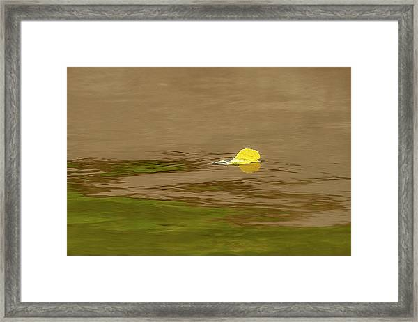 Framed Print featuring the photograph Autumn Beginnings by Scott Cordell
