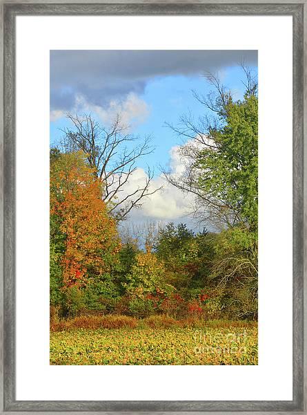 Autumn Breeze Nature Art Framed Print