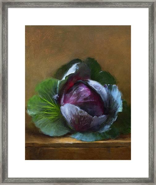 Autumn Cabbage Framed Print