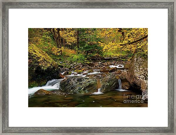Autumn Clear Framed Print