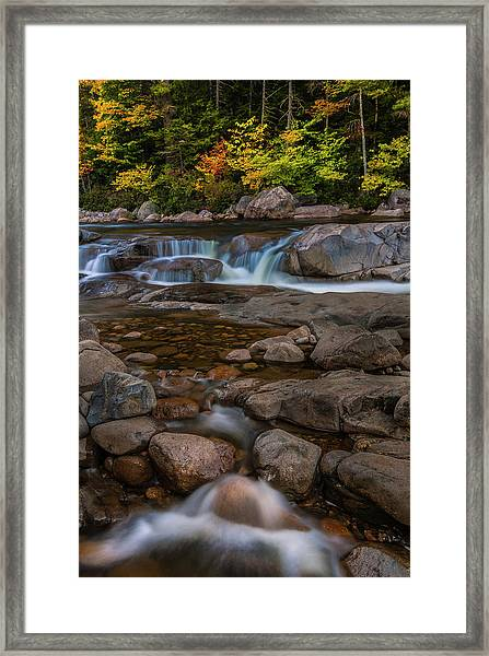 Autumn Colors In White Mountains New Hampshire Framed Print