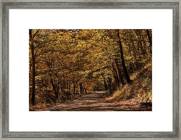 Autumn Colours Framed Print by Nikos Stavrakas