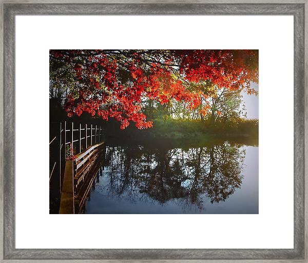 Autumn Creek Magic Framed Print