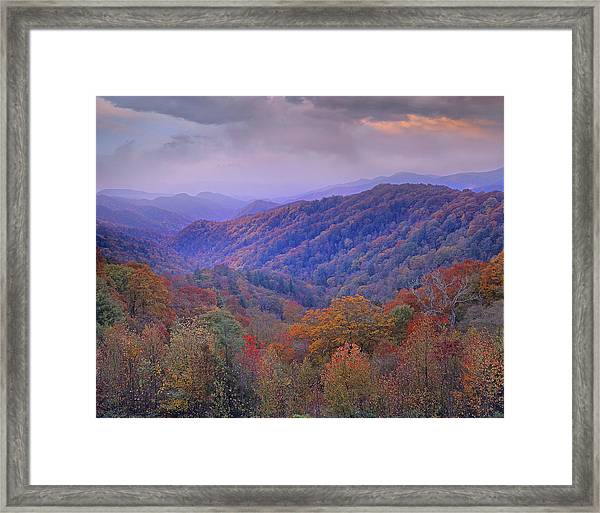Autumn Deciduous Forest Great Smoky Framed Print
