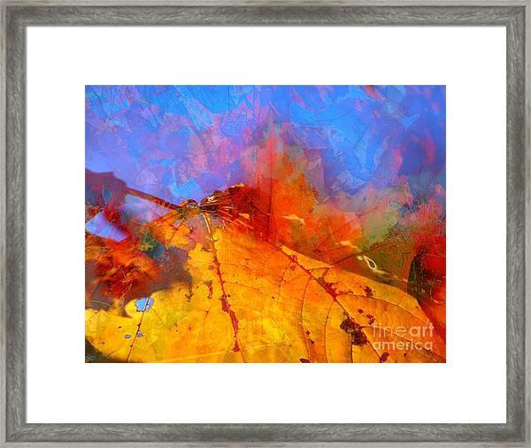 Autumn Fusion 1 Framed Print