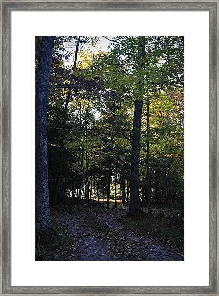 Autumn Glen Framed Print