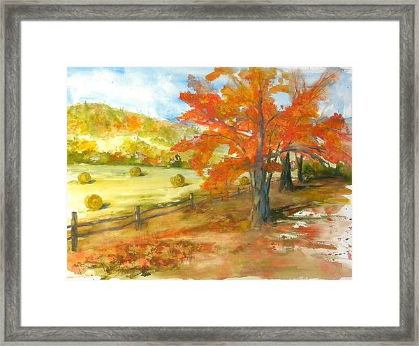 Autumn Harvest Framed Print by Kris Dixon